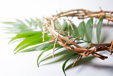Palm Sunday BLOG 3